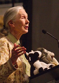 Jane Goodall photo 3