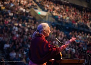 <p>Speaker Spotlight: Jane Goodall</p>