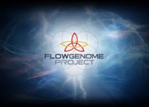 <p>Steven Kotler is Cofounder &amp; Director of Research for the Flow Genome Project, the largest open-source citizen science project into ultimate human performance in the world</p>