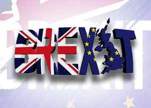 <p>Alan Krueger is a highly sought-after commentator on Brexit</p>